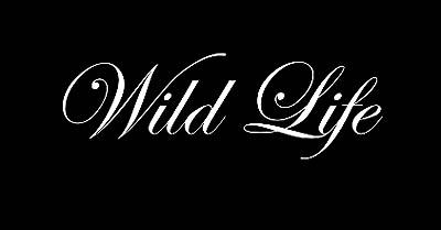 <i>Wild Life</i> Title Card