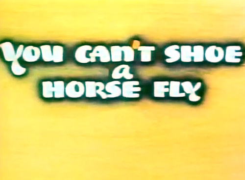 <i>You Can't Shoe A Horse Fly</i> Title Card